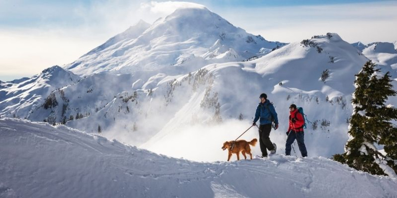 Is snowshoeing good exercise?