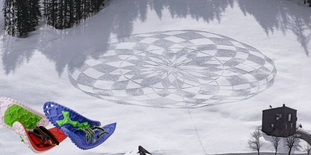 What is Snowshoe Art?