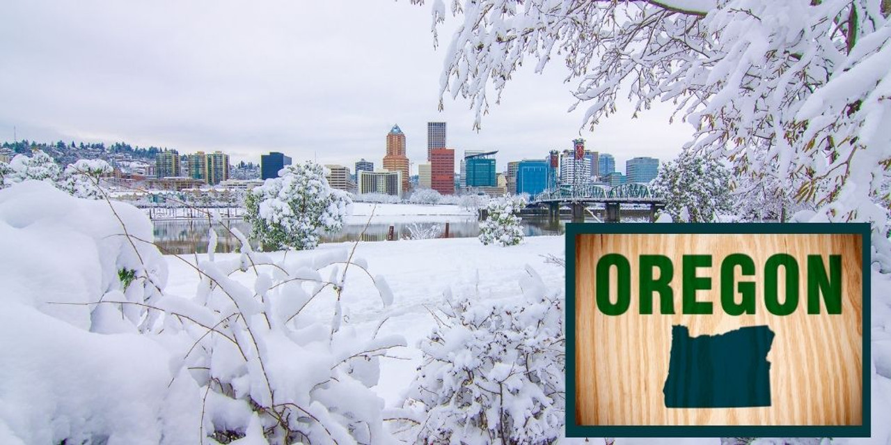 Best Places to Snowshoe in Oregon
