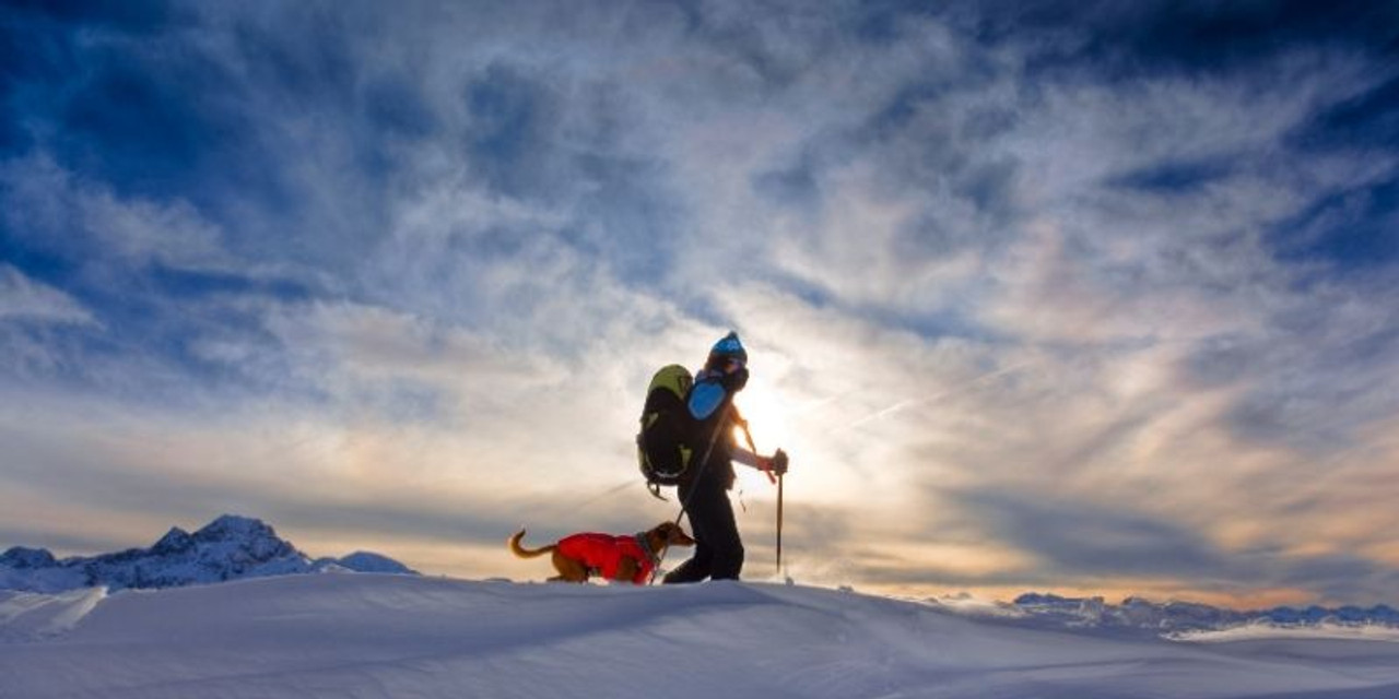 Springtime Snowshoeing - Best Places and Better Deals