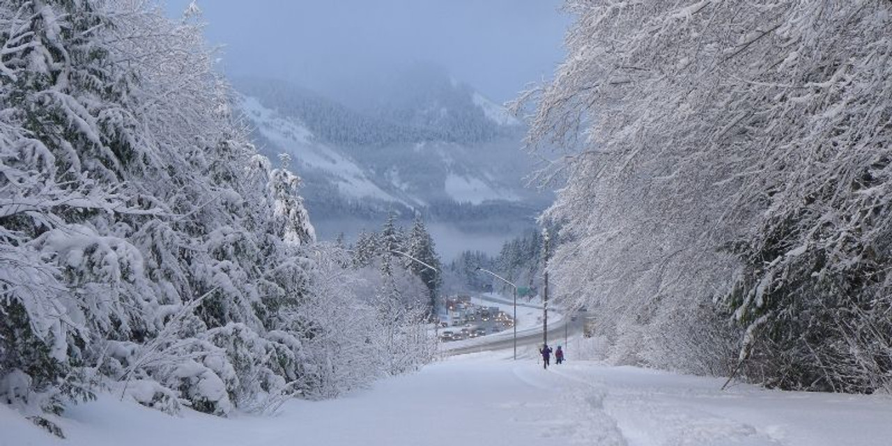 What is the attraction to Snowshoeing?