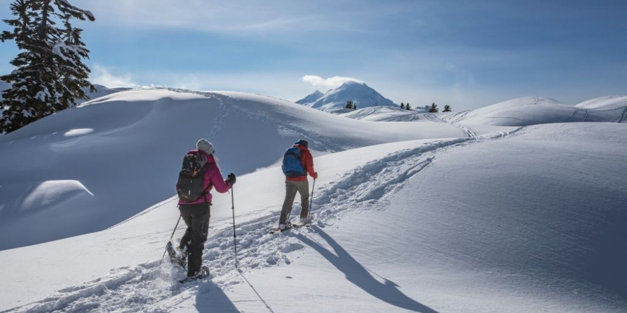 Why Wear Snowshoes?