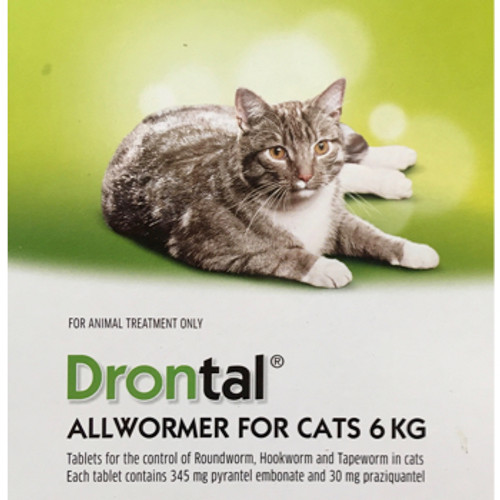 Drontal Allwormer for Large Cats 6kg (Per tablet)