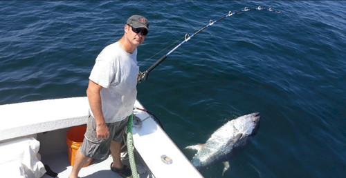 Century Chatham Unlimited 130# 8' Tuna Rod