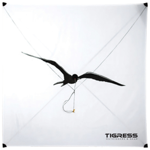 fishing kites