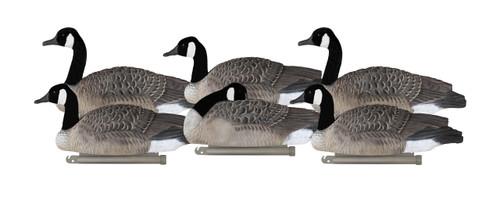 Canada Goose Silhouettes | Lucky Duck Decoys