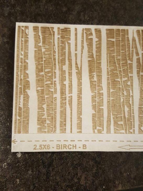 Laser Cut Texture Paper -birch Trees