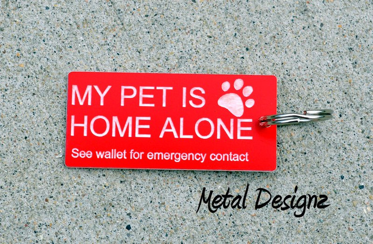 Pet Home alone Tag - Sold individually