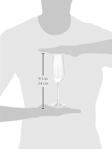 7 oz Polycarbonate Champagne Glass (PLTHCP007C)