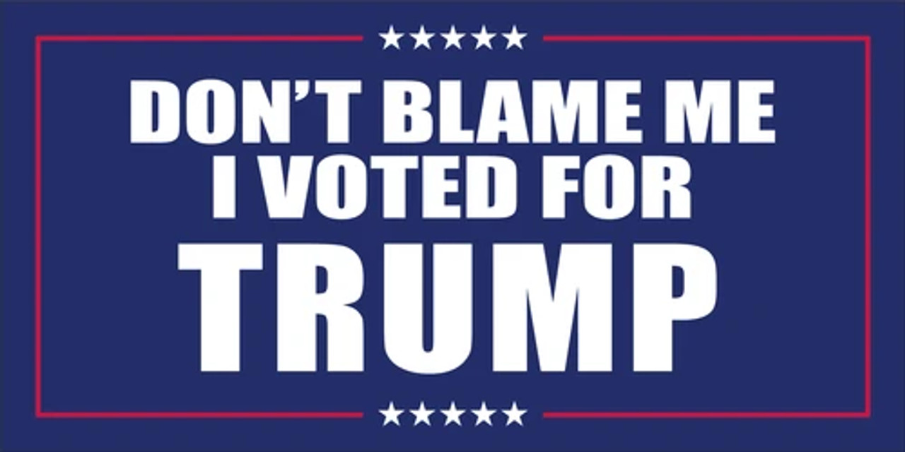 DONT BLAME ME I VOTED FOR TRUMP 3x5'