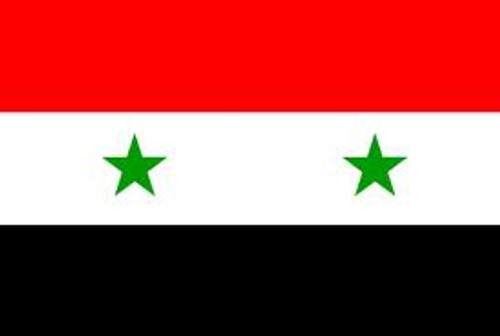 SYRIA NYLON FLAGS 2X3' TO 5x8''