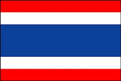THAILAND NYLON FLAGS 2X3' TO 5x8'