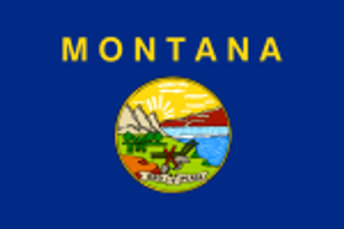 "MONTANA NYLON FLAGS 12X18"" TO 10X15' US MADE"