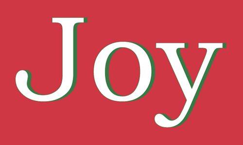 JOY 3X5' NYLON FLAG