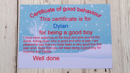 good behaviour certificate boy