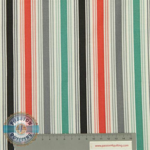 Papillon stripe per 25cm