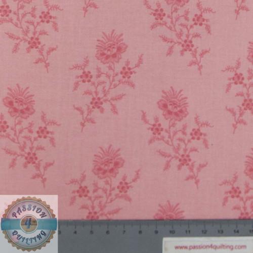 Braveheart Fern Carnation Pink per 25cm