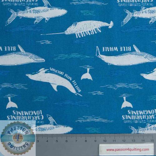 Explore the oceans -Dolphins & Whales per 25cm