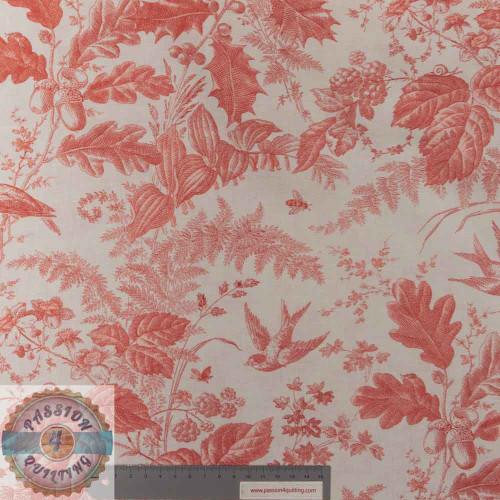 Braveheart Toile Primrose Pink per 25cm
