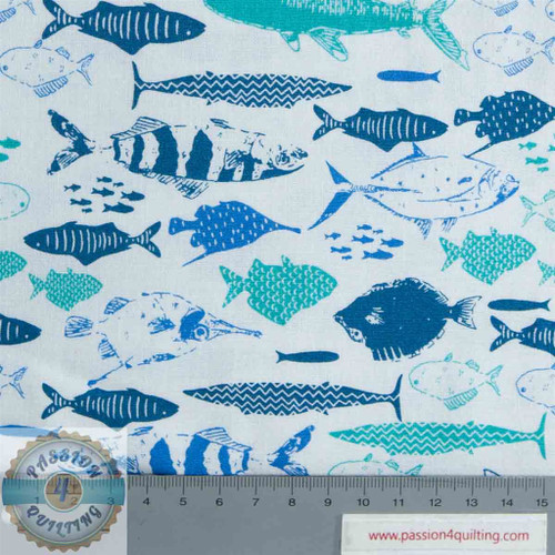 Explore the oceans - fish per 25cm