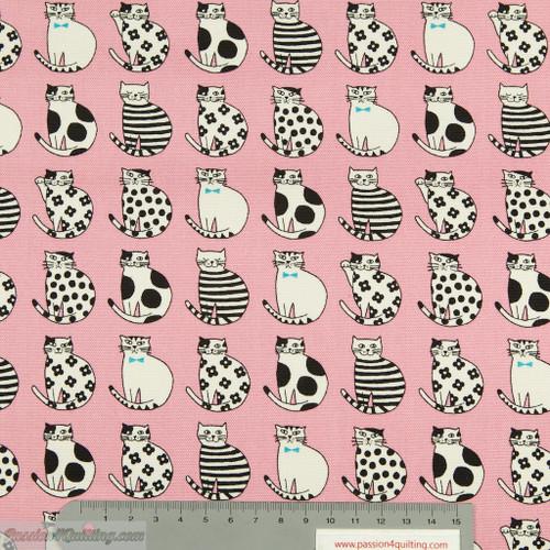 Kassha Cats Pink