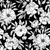 Ink Drawings Black and White Flowers