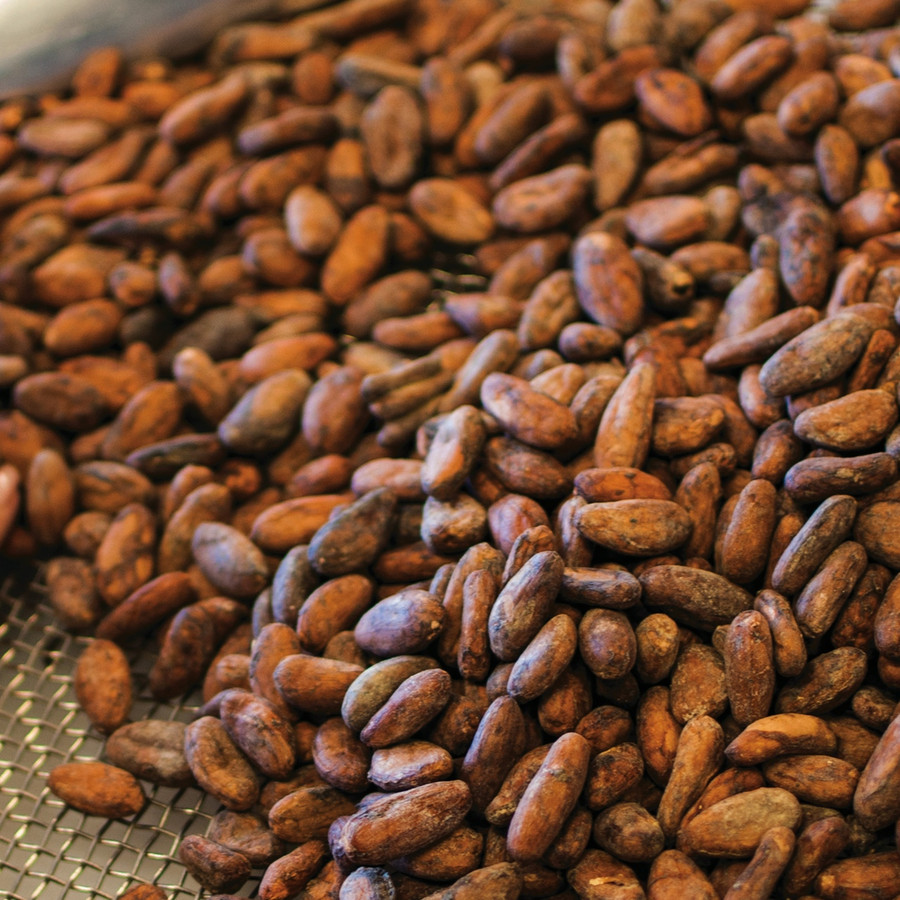 Roasted Certified Heirloom Ecuadorian Heirloom Arriba Nacional Cacao 1 pound