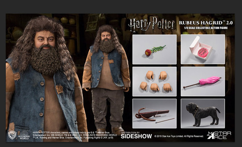 RUBEUS HAGRID 2.0 Harry Potter Sorcerer's Stone Star Ace Toys 1:6 Figure