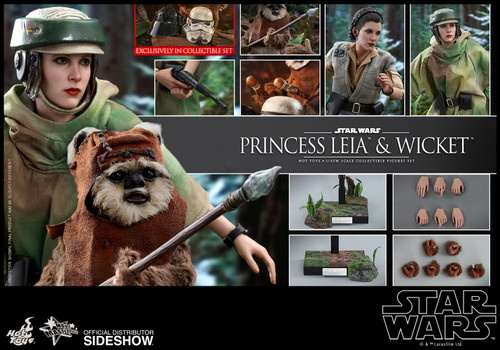 Star Wars PRINCESS LEIA & WICKET Sixth Scale Figure Set by Hot Toys