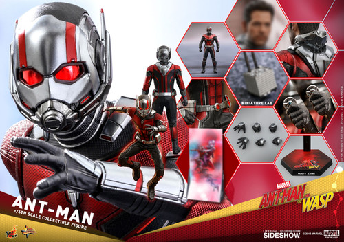 Hot Toys ANT-MAN Sixth Scale Collectible Ant-Man & the Wasp Figure MMS497