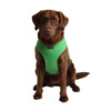 Puppia Soft Mesh Harness in green on large dog