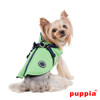 Puppia Mountaineer Coat in green on dog model