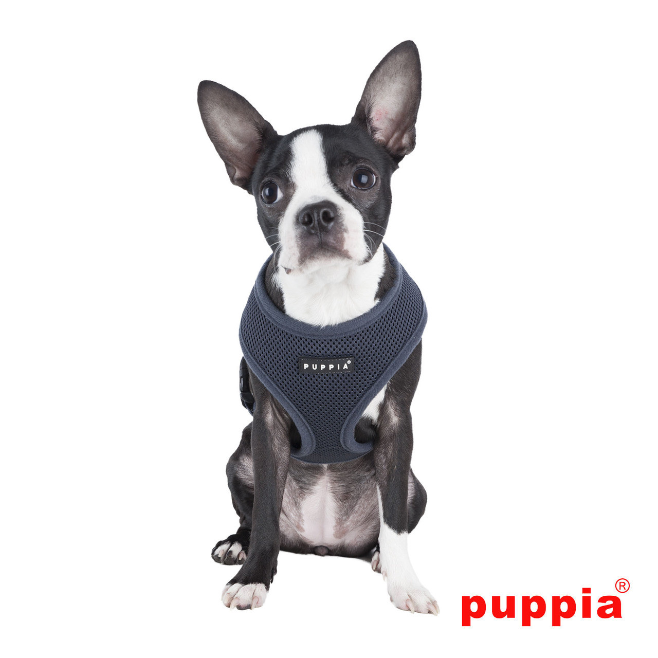 Puppia Soft Mesh Harness in Gray on dog model