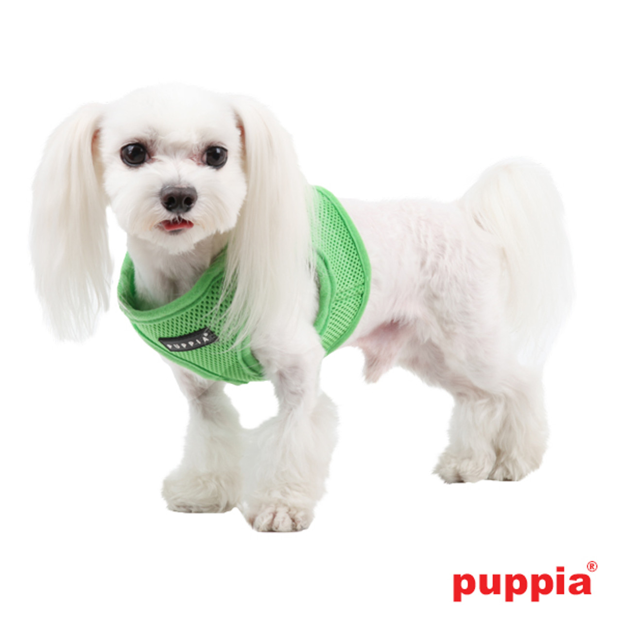 Puppia Soft Mesh Vest in Green on dog model
