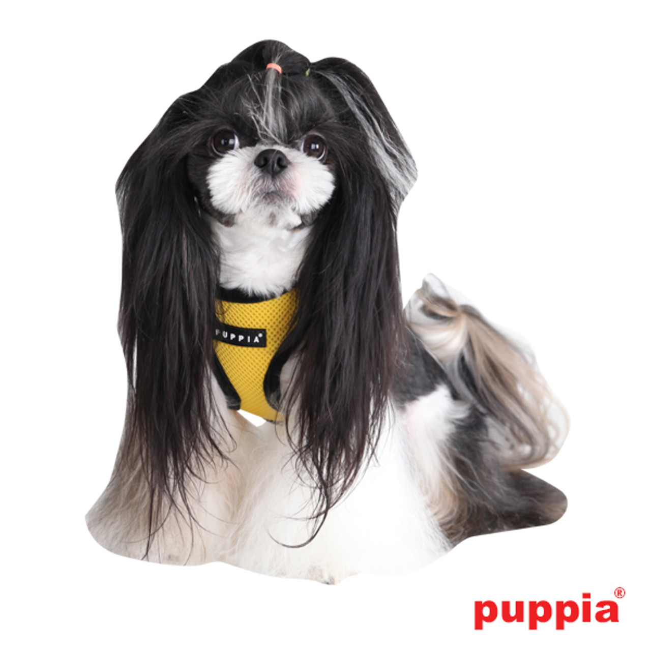 Puppia Soft Mesh Vest in Yellow on dog model