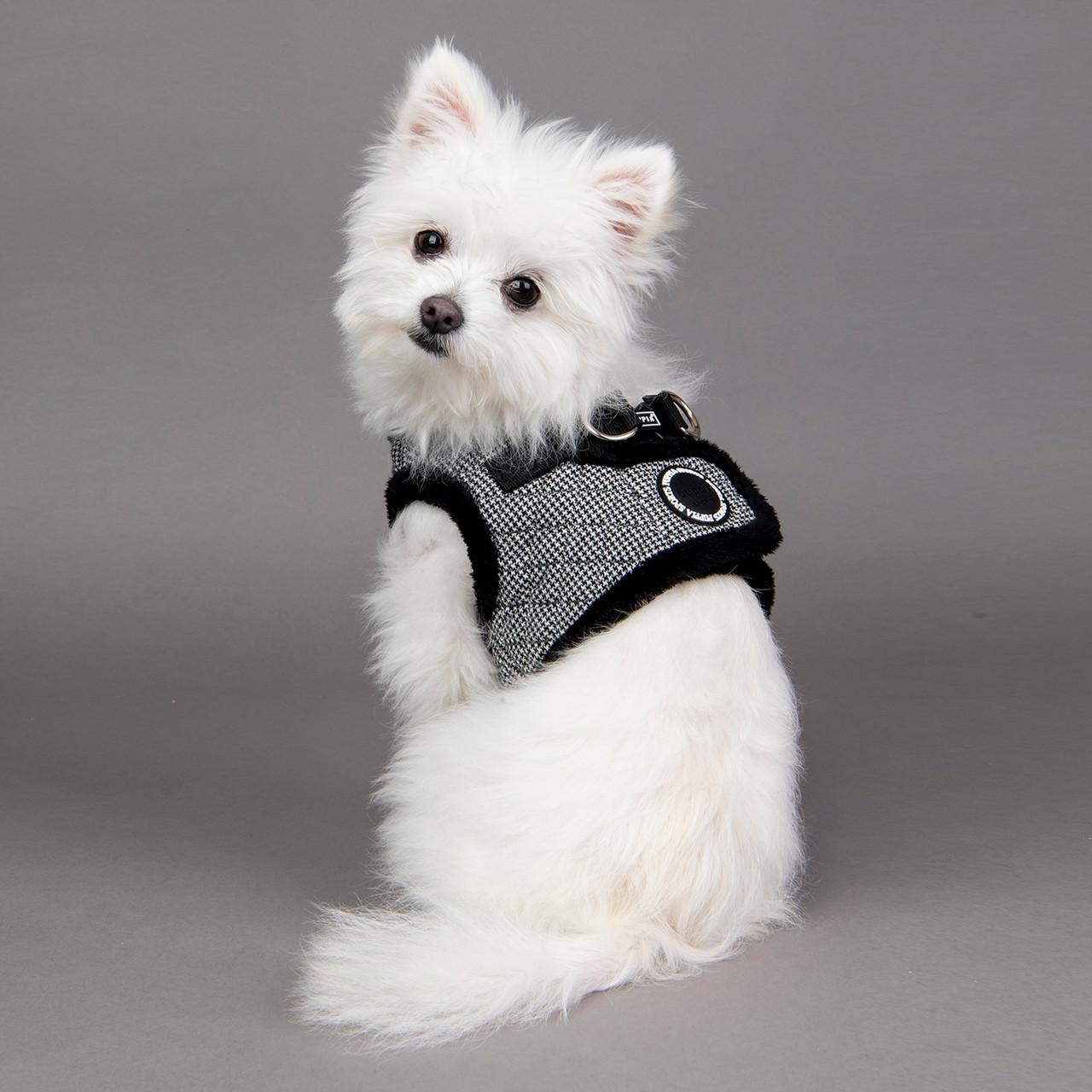 Puppia Gaspar Harness Vest (B)