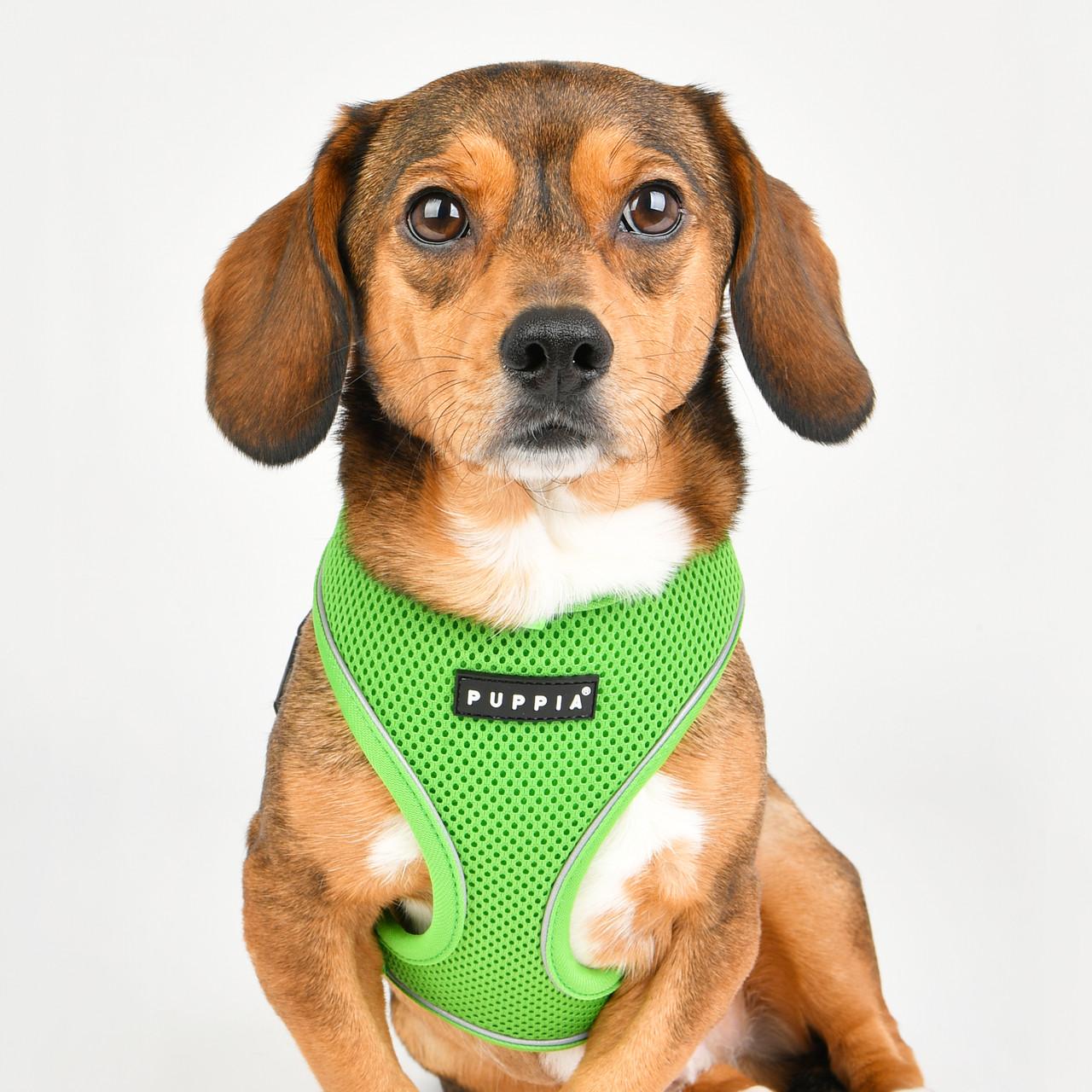 Puppia Reflective Soft Harness Pro A -NEW COLORS