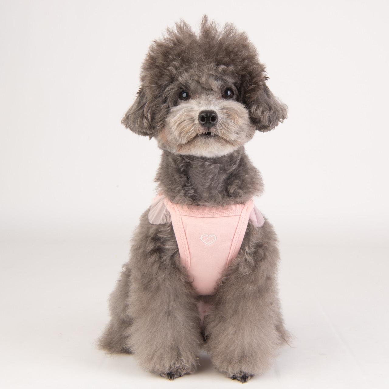 Pinkaholic Lobelia(by Puppia)