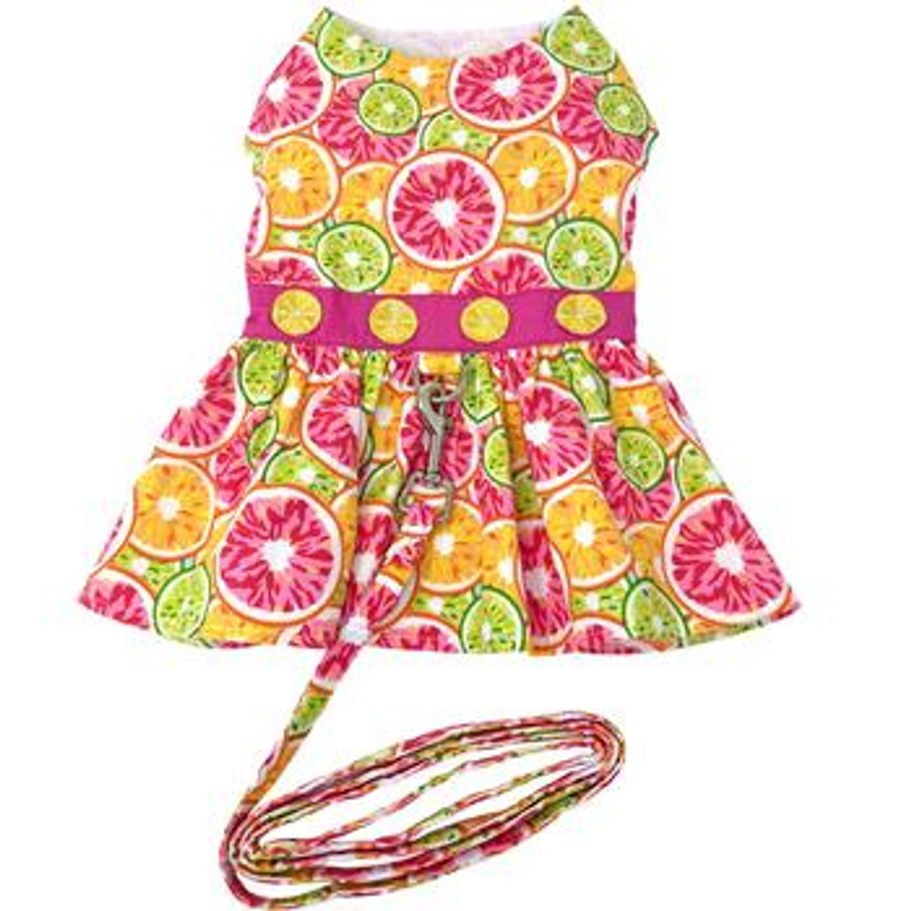 Citrus Slice Harness Dress with Matching Leash