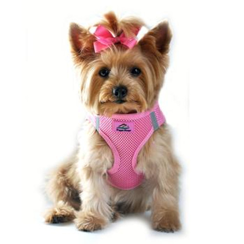 American River Dog Harness Solid Mesh