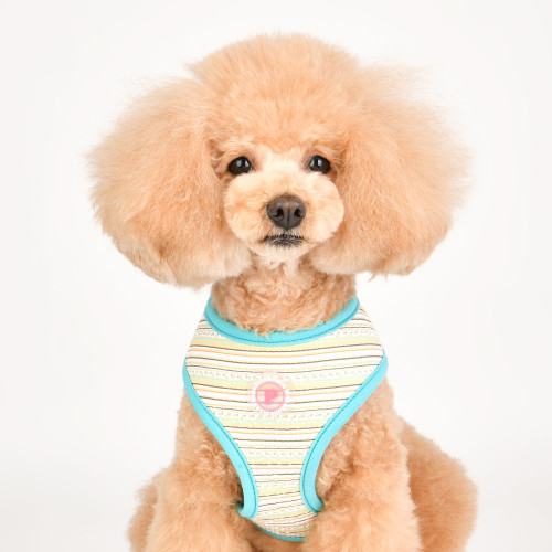 Pinkaholic Joie Harness (by Puppia)