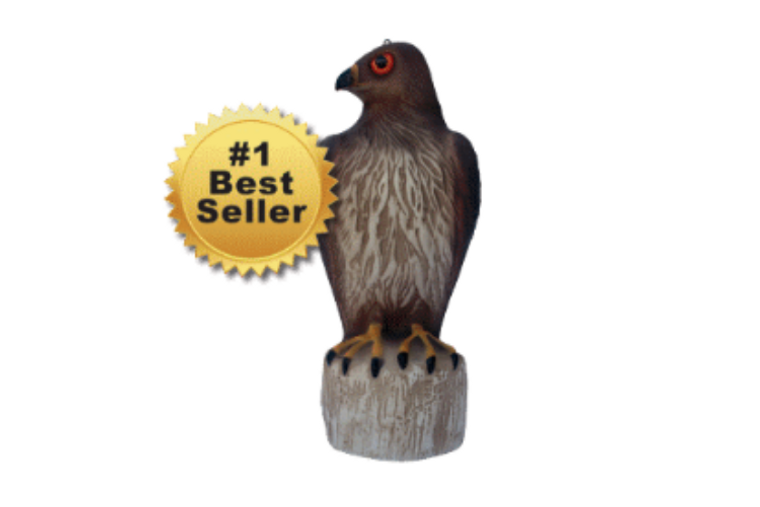 Red Tailed Hawk Decoy