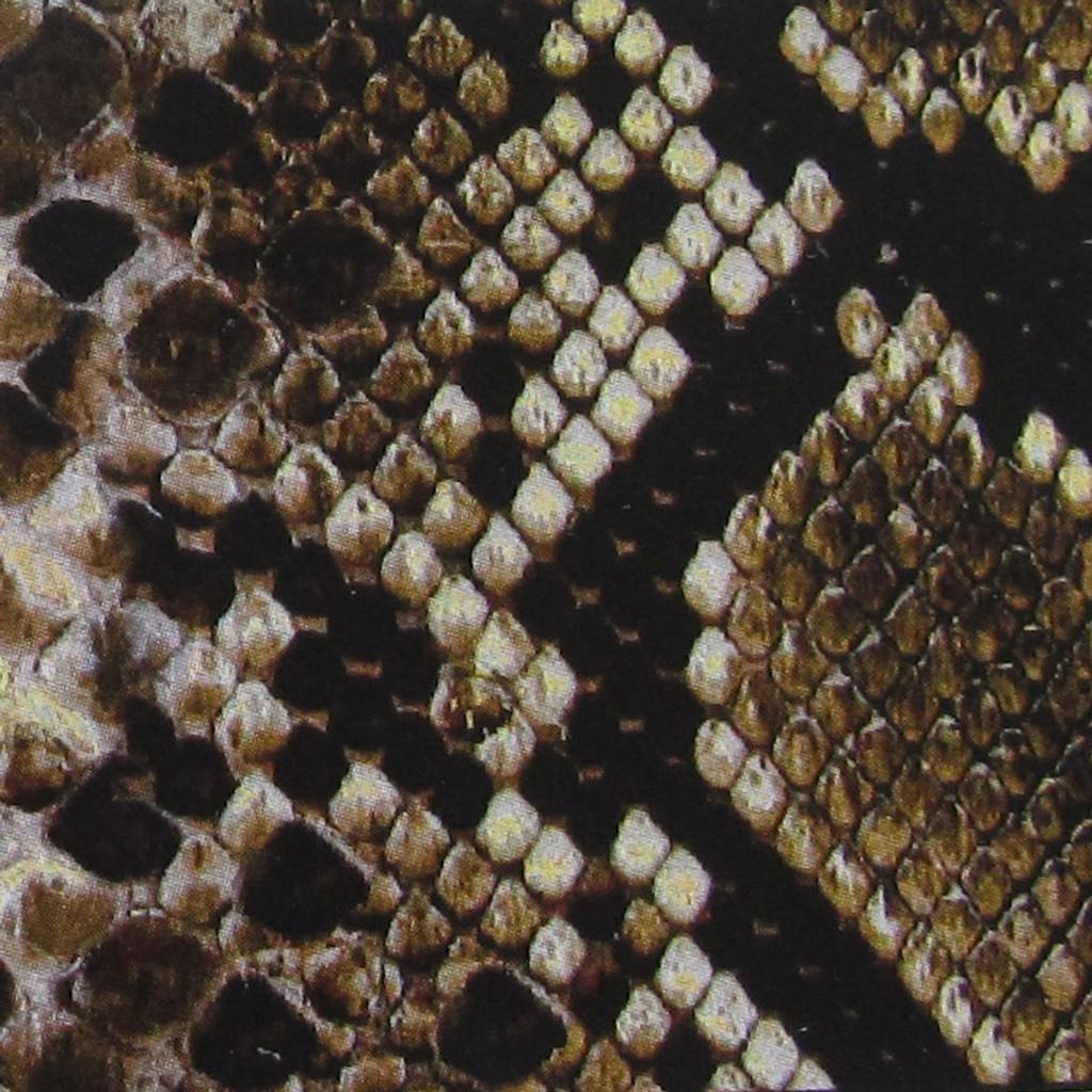 Snake Skin Print Strap Swatch