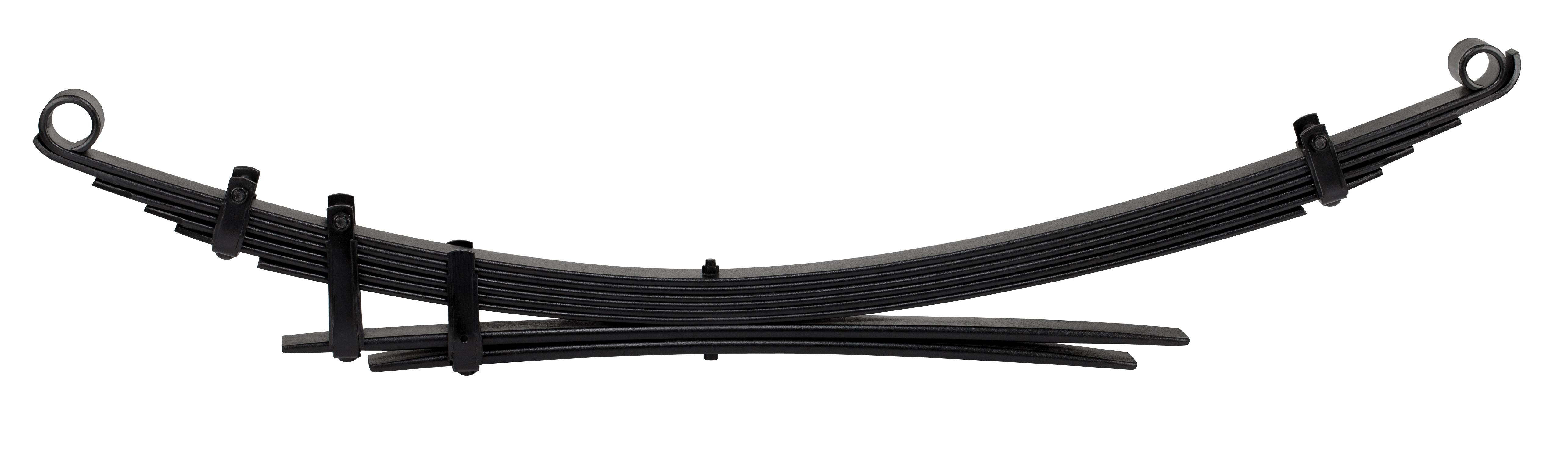 rear-leaf.jpg
