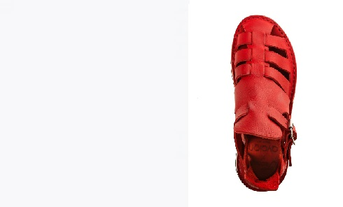 red-shoe.jpg