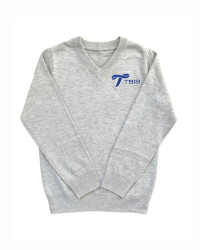 TBIS V-necked jumper