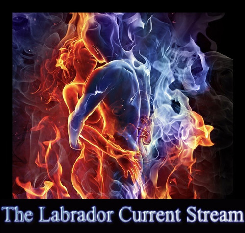 The Labrador Current Music Stream - Audio Download