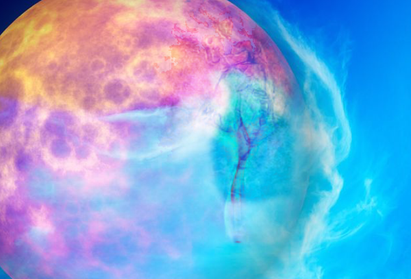 The Solar Words of Power Part II: Solar Consciousness - Live Webinar
