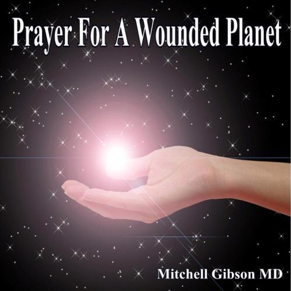 Prayer For A Wounded Planet