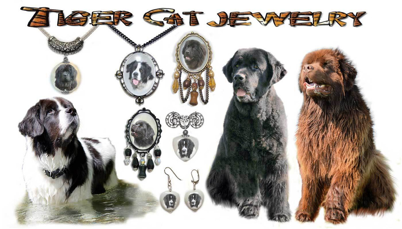 Newfoundland Dog Photo Jewelry